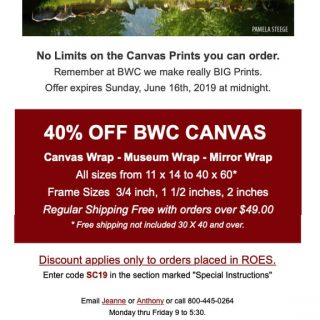 BWC Printmakers - Canvas Sale email