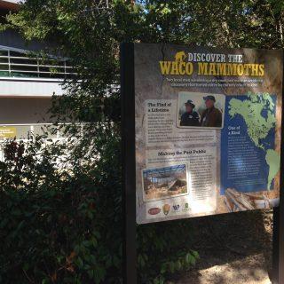 Waco Mammoth graphics