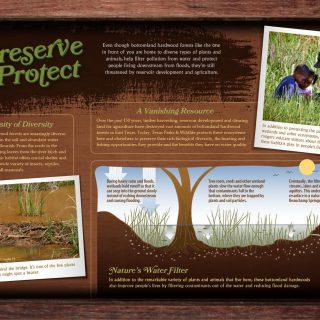 Palmetto State Park - Preservation interpretive